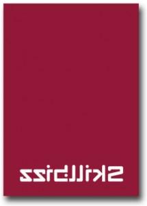 briefpapier-skillbizz-az-290x404